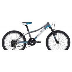 دوچرخه جاینت مدل Giant XTC JR 20 (2015)