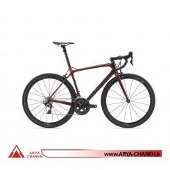 دوچرخه کورسی جاینت مدل تی سی آر ادونسد اس ال GIANT TCR ADVANCED SL 2 2020