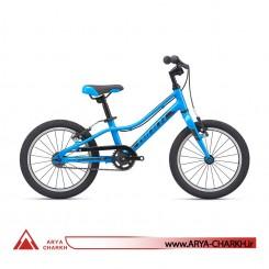 دوچرخه کوهستان جاینت ای ار ایکس سایز 16 (GIANT ARX 16 F/W (2020
