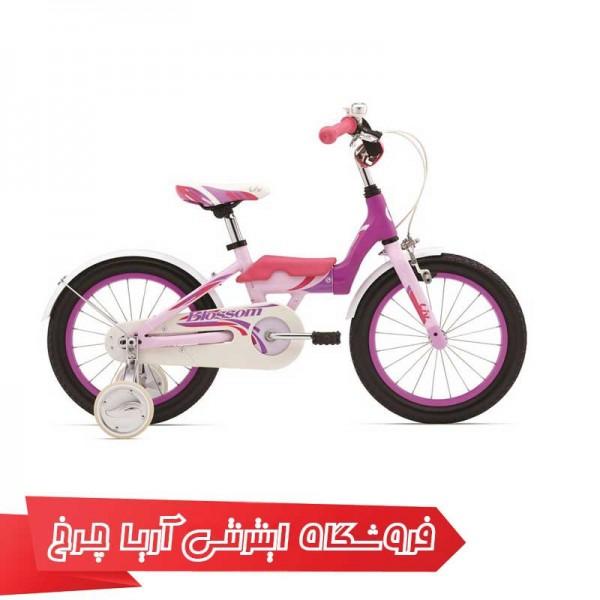 دوچرخه کودک جاینت مدل بلسِم 16 |(2015) Giant Blessom 16